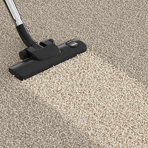 best carpet cleaning St. Paul